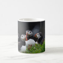 Puffin Gang Coffee Mug