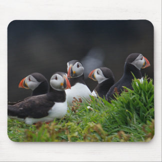 Puffin Gang Mouse Pad