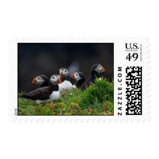 Puffin Gang Postage