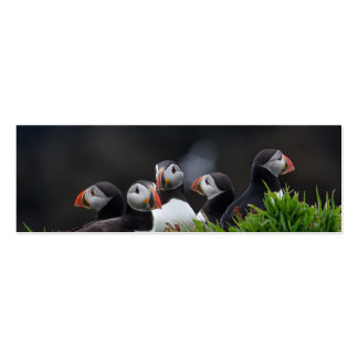 Puffin Gang Profile Card Business Card Template