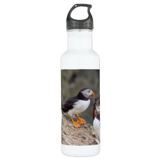 Puffin Group Water Bottle