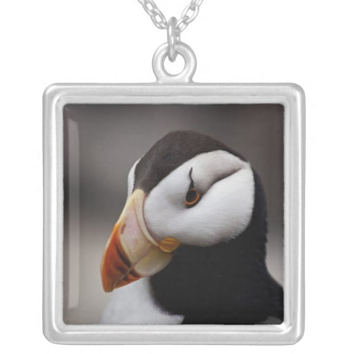 Puffin Horned 9020 Necklace