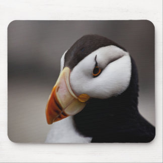 Puffin Horned 9028 Mouse Pad