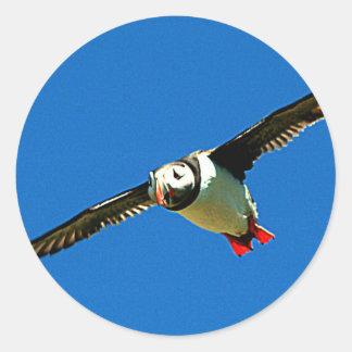 Puffin in flight classic round sticker