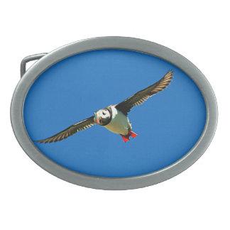 Puffin in flight oval belt buckles