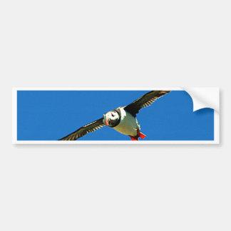 Puffin in flight skellig Islands Ireland Bumper Sticker