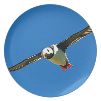 Puffin in flight skellig Islands Ireland Party Plates