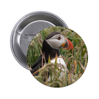Puffin in Grass Button