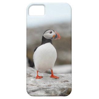 Puffin Iphone Case 5