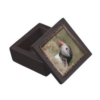 Puffin Jewelry Box