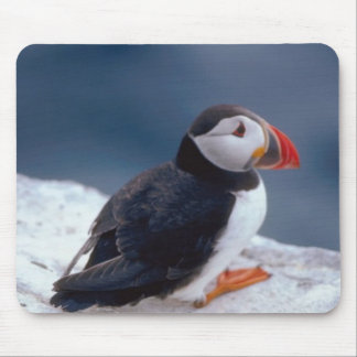 Puffin Mouse Pad