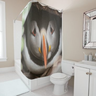 Ocean Themed Puffin photograph shower curtain