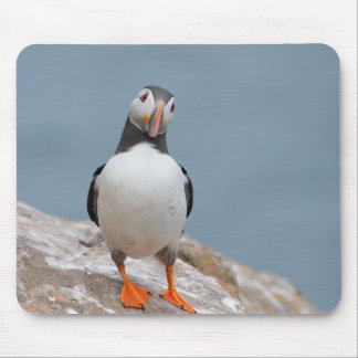 Puffin Pose Mouse Pad