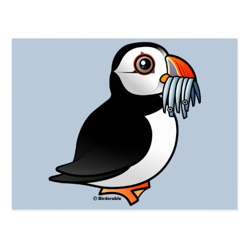 Puffin Prowess Postcard