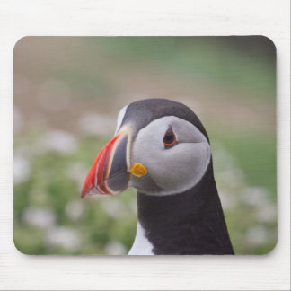 Puffin Side View Mousepads
