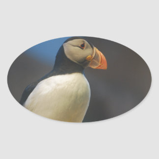 Puffin Stickers