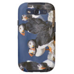 Puffin-tastic Galaxy SIII Covers