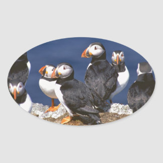 Puffin-tastic Oval Stickers