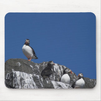 Puffins Mouse Mat