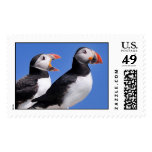 Puffins postage stamps
