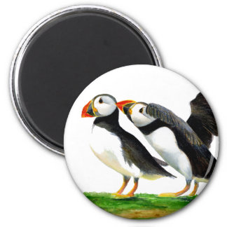 Puffins Seabirds in Watercolour Paints Artwork Magnet