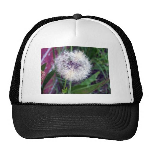 Puffy White Mesh Hat