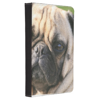 pug-18 kindle touch cover