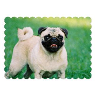 pug-30.jpg card