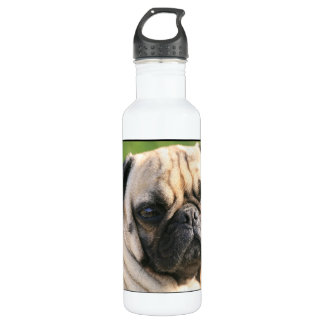pug-37.jpg 24oz water bottle