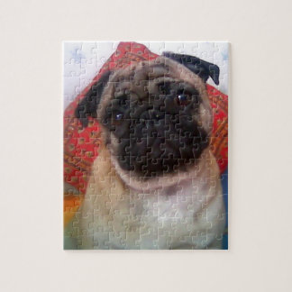 pug 4.png jigsaw puzzle