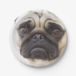 pug-7 7 inch paper plate