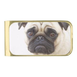 pug-7 gold finish money clip