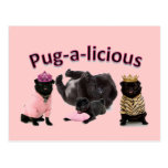 Pug-A-Licious Post Cards