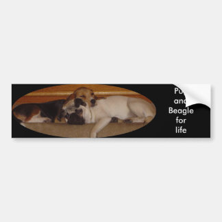 Pug and beagle for life bumper sticker 2 car bumper sticker