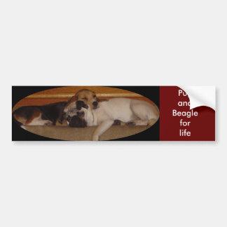 Pug and beagle for life bumper sticker 3 car bumper sticker