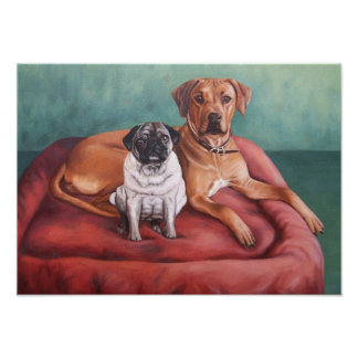 Pug and Ridgeback Póster