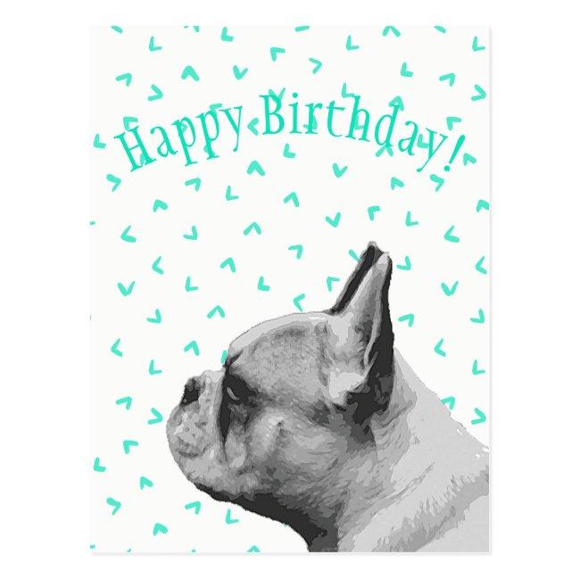 Pug   Aqua colored pattern   Happy Birthday
