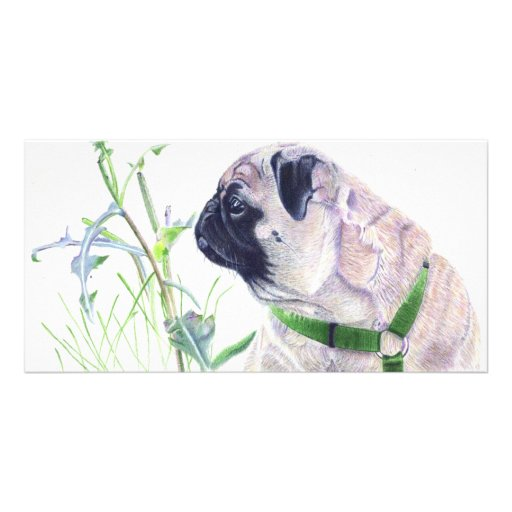 Pug Art Card Personalized Photo Card