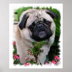 Pug Art Print print