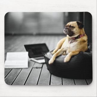 Pug at Rest Mouse Pad