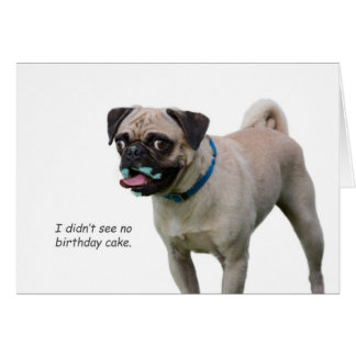 Pug Birthday Card by Focus for a Cause