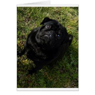pug black full greeting card