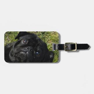 pug black bag tag