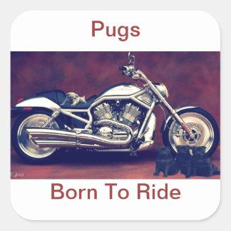 Pug Born To Ride Square Sticker
