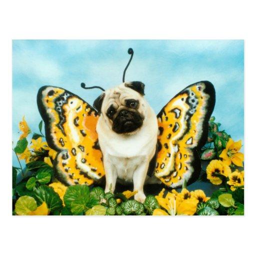 Pug Butterfly Postcard