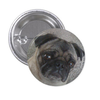 pug buttons