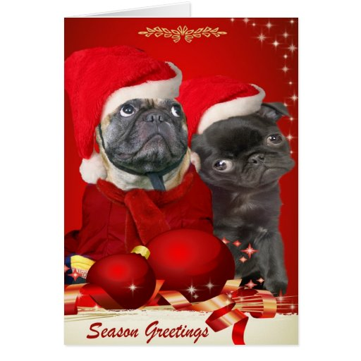 pug christmas pals greeting card