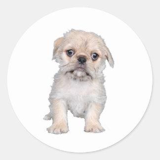 """Pug "" Classic Round Sticker"