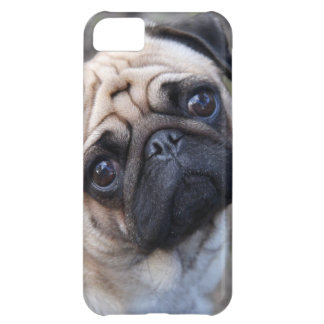 PUG COVER FOR iPhone 5C