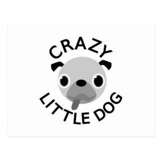 Pug Crazy Little Dog Postcard